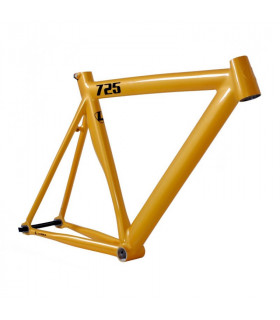 FRAMESET LEADER 725 2016 GOLD LIT GLOSS