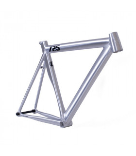 LEADER 725 2016 FRAMESET (SCOTCH BRUSH POLISH)
