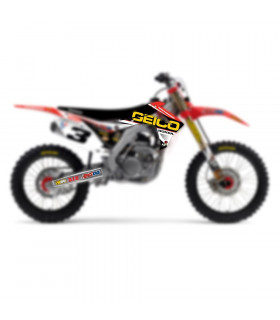 D'COR VISUALS TEAM GEICO HONDA GRAPHICS KIT