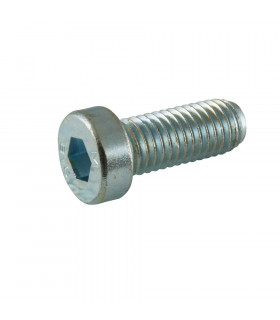 RTECH REDUCED HEX HEAD  SCREWS (M10X15 MM/8PIECES)