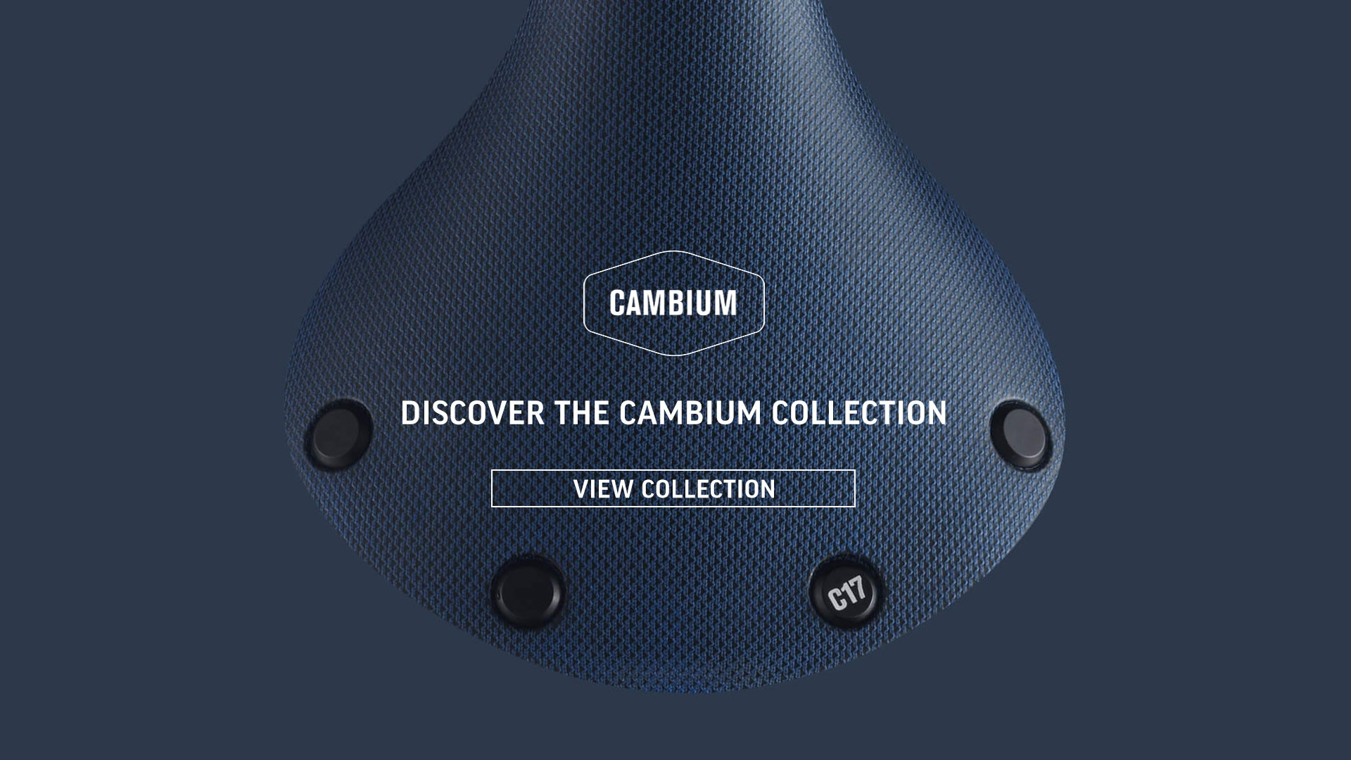 Brooks Cambium Saddle